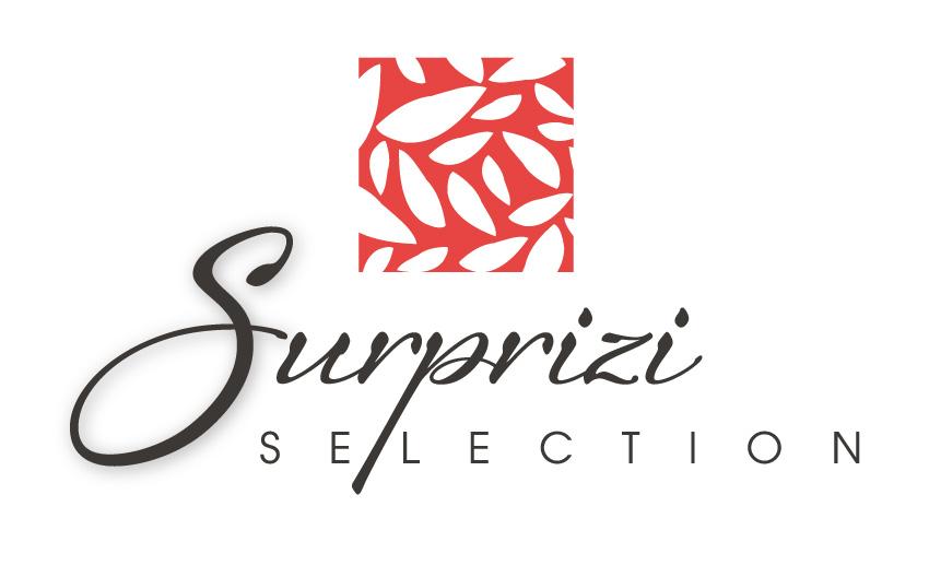 Graphic Plugin, studio de graphisme à Liège : Projet : Logo pour Surprizi